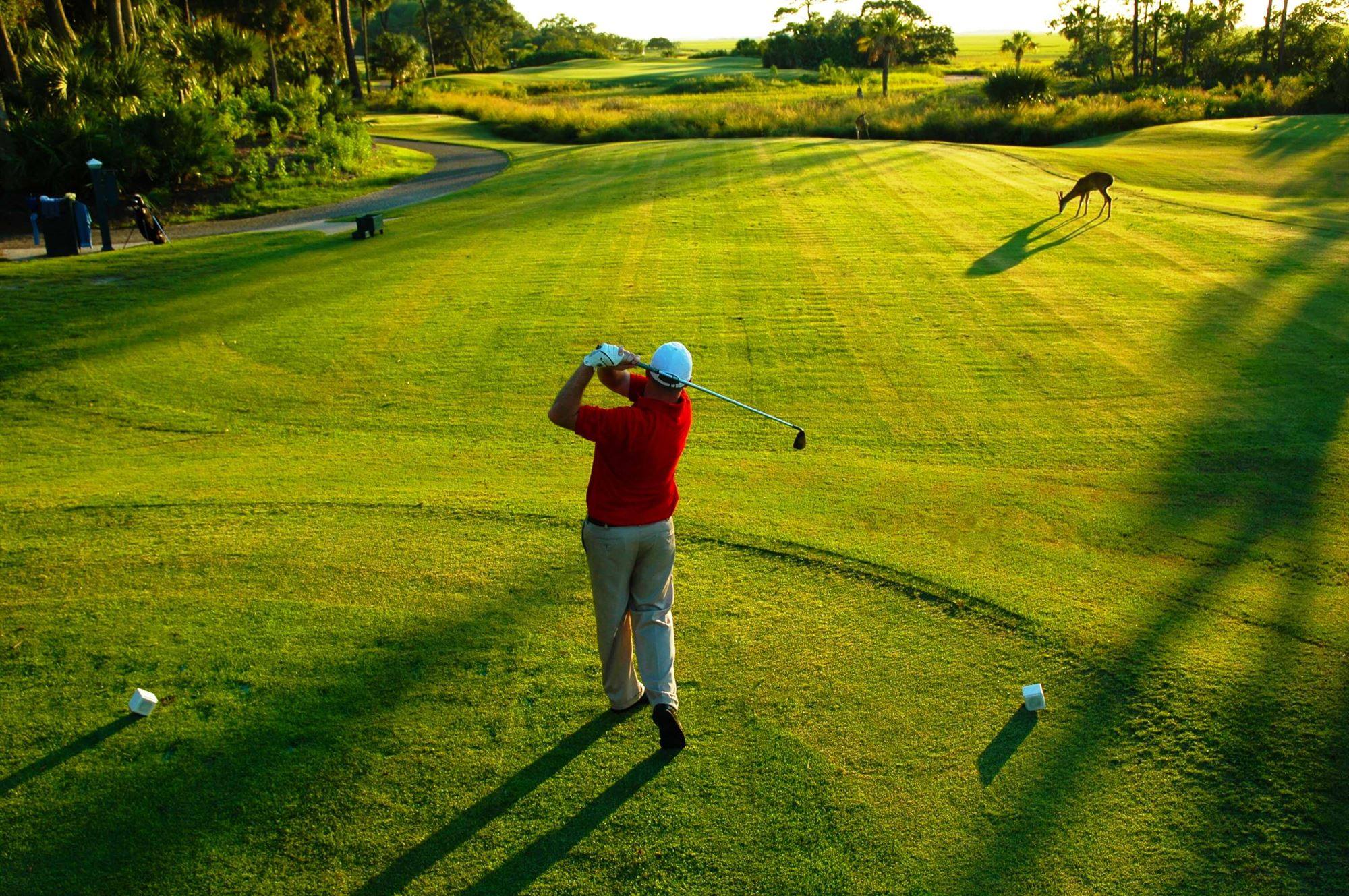 A golfer's swing at dusk