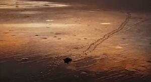 Chuck-Livecchi-Finding-Purpose-Sunset-Trail