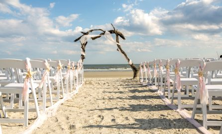 driftwood arch at the end of a wedding aisle setup
