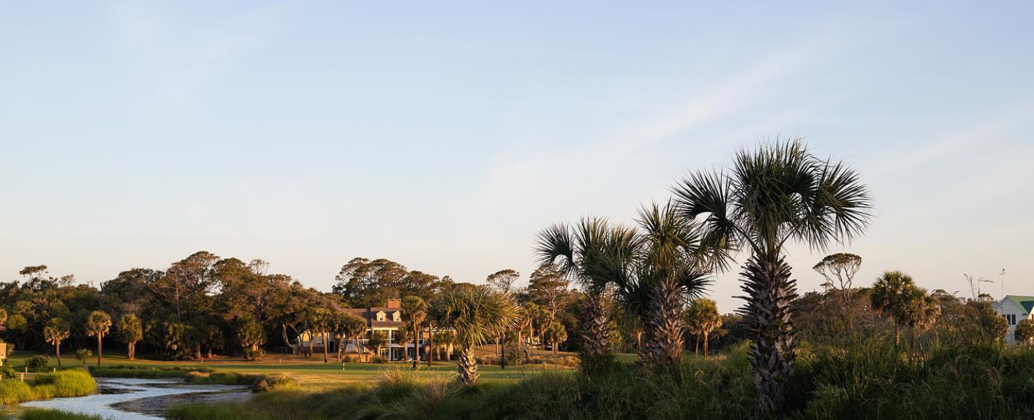 view of trees and sky from a Fripp Island golf course